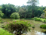 Шри-Ланка, Королевский ботанический сад.