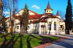Сербия, Баня-ковиляча