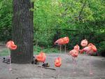 Германия, Берлинский зоопарк