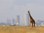 Кения, Найроби