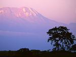 Танзания, Додома