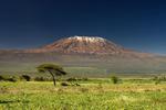 Танзания, Национальный парк килиманджаро.