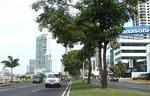 Панама, Колон