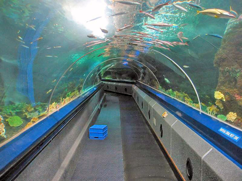 Малайзия аквариум лангкави