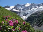 Швейцария, Гриндельвальд